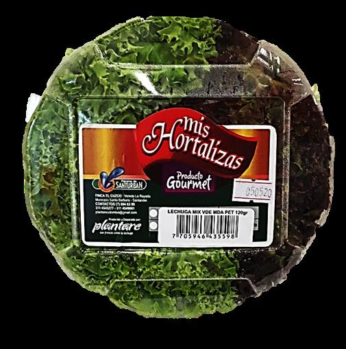 Lechuga mix Verde Morada Pet120g