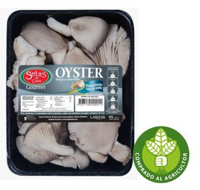 Champiñon Oyster Gourmet 250 g